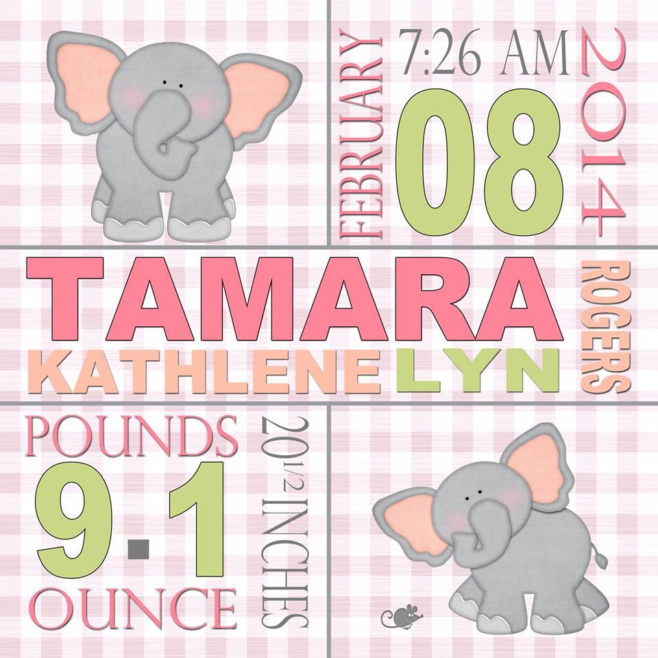 Baby Information Prints