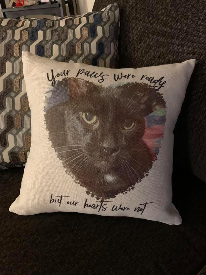 Pivot Pillow Friends Theme